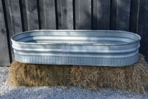 watering-trough